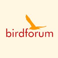 Birdforumshop.com Coupon Codes and Deals