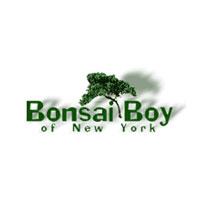 Bonsai Boy Coupon Codes and Deals