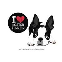 Boston Terrier Secrets Coupon Codes and Deals