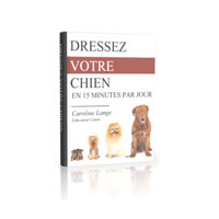 Dresser Son Chien Coupon Codes and Deals