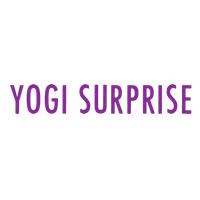 Yogi Surprise Coupons